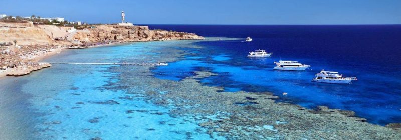 Vacances en gypte mer rouge s embarquez sur la mer rouge petits prix est ce possible - Chambre froide trop humide ...
