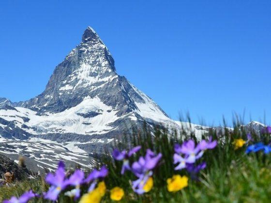 que faire en suisse