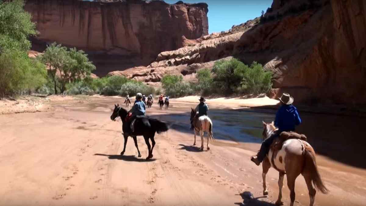 pourquoi visiter arizona