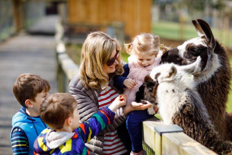 zoo frejus