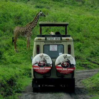 safari luxe tanzani